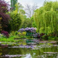 Pond, Monet's Garden, Giverny, Normandy, France