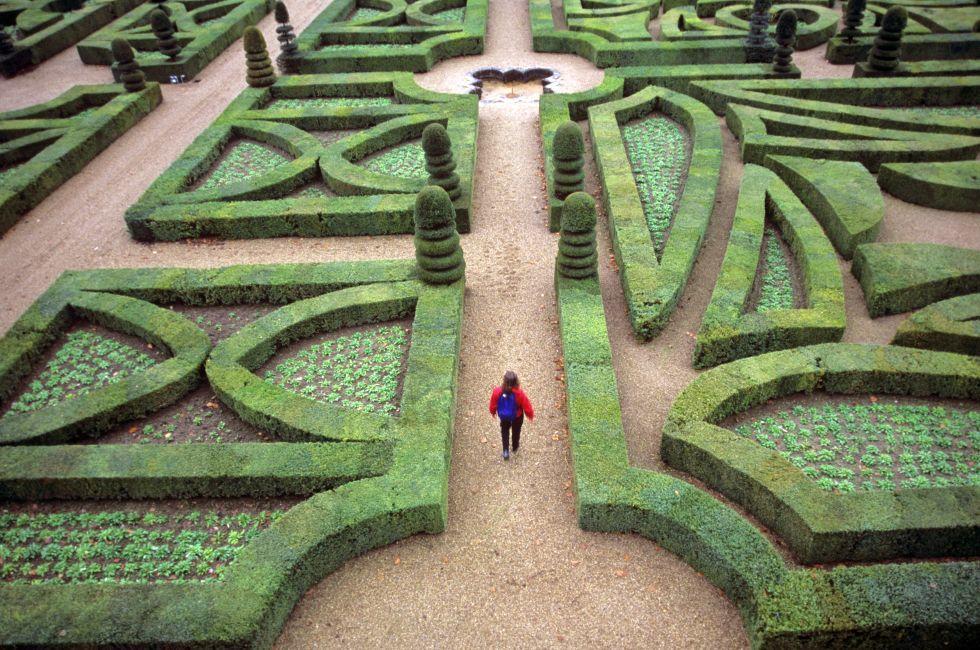 Woman, Garden, Path, Chateau de Villandry, Villandry, The Loire Valley, France