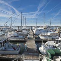 Boats, Marina, Doct, Beaufort, South Carolina