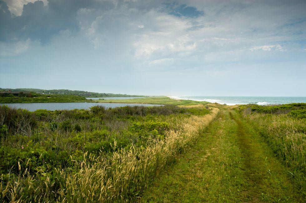 Landscape, Coastline, Chilmark, Martha's VIneyard, Massachusetts, USA
