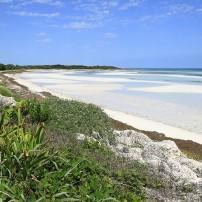 Beach, Bahia Honda Key, The Florida Keys, Florida, USA