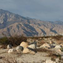 Desert, Twentynine Palms, California