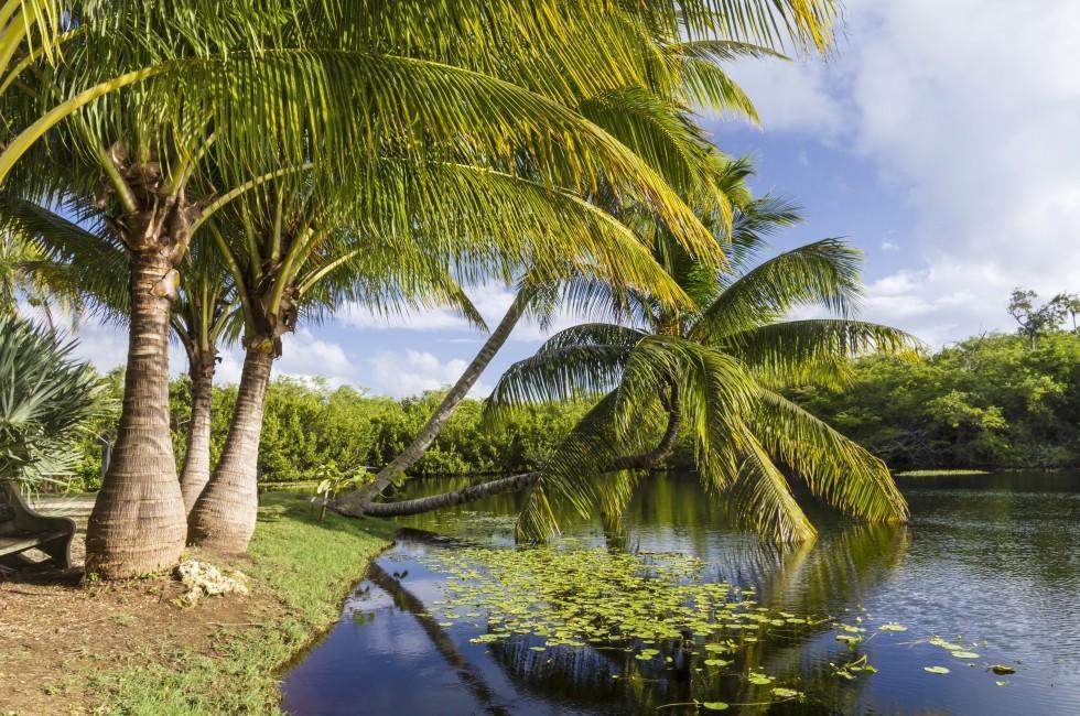 The Queen Cayman Islands
