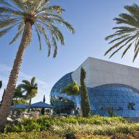 The Salvador Sali Museum, St. Petersburg, Florida