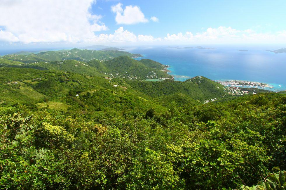 Sage Mountain National Park, Tortola, British Virgin Islands, Caribbean
