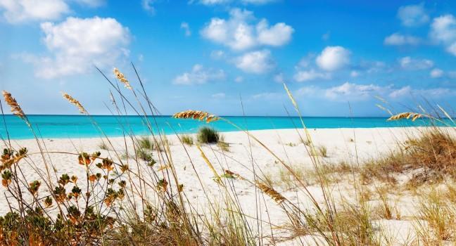 Dunes, Half Moon Bay, Turks and Caicos, Caribbean