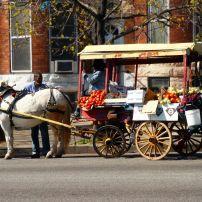 Produce Cart, West Baltimore, Baltimore, Maryland