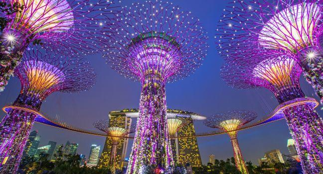 Supertrees, Gardens by the Bay, CBD, Singapore, Asia.