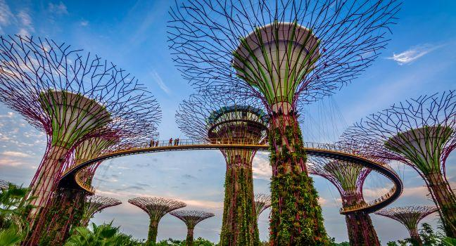 Gardens by the Bay Review | Fodor\'s Travel