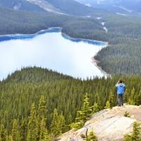 Hiker, Peyto Lake, Banff, Alberta, Canada