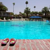 Swimming Pool, Palm Springs and the Desert Resorts, California, USA
