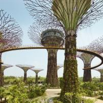 Gardens by the Bay, Singapore;