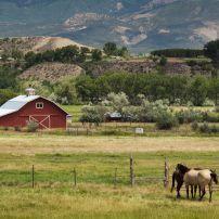 Red Barn, Farm, Grand Junction, Colorado