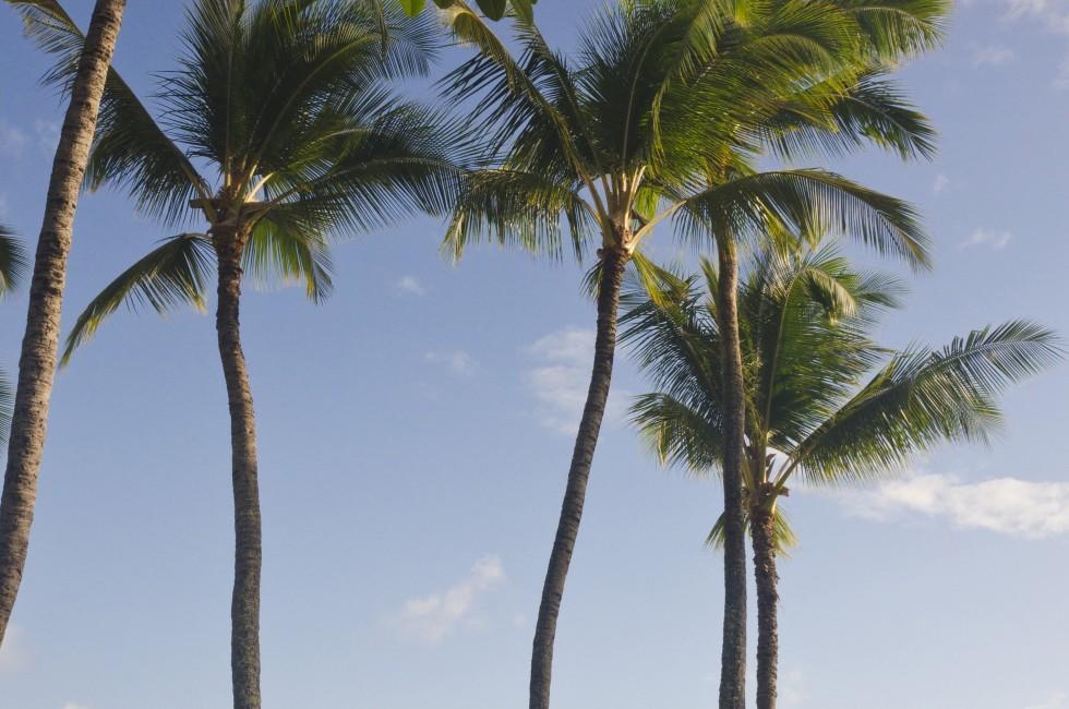 Nawiliwili Beach, Kauai, Hawaii, USA