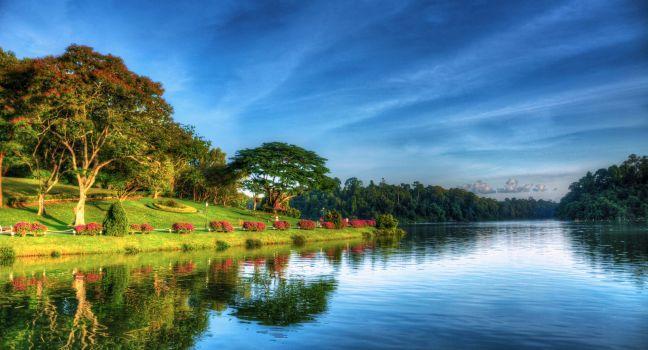 Sunrise, MacRitchie Reservoir Park, Greater Sinapore, Singapore, Asia.