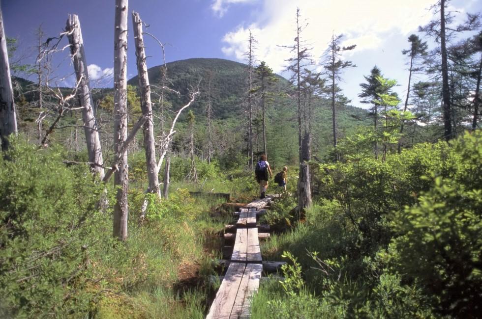 Cannon Mountain, White Mountains, New Hampshire, USA