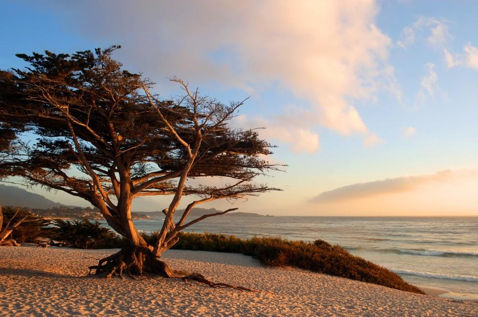 Sunrise, Beach, Carmel-by-the-Sea, Monterey Bay, California, USA