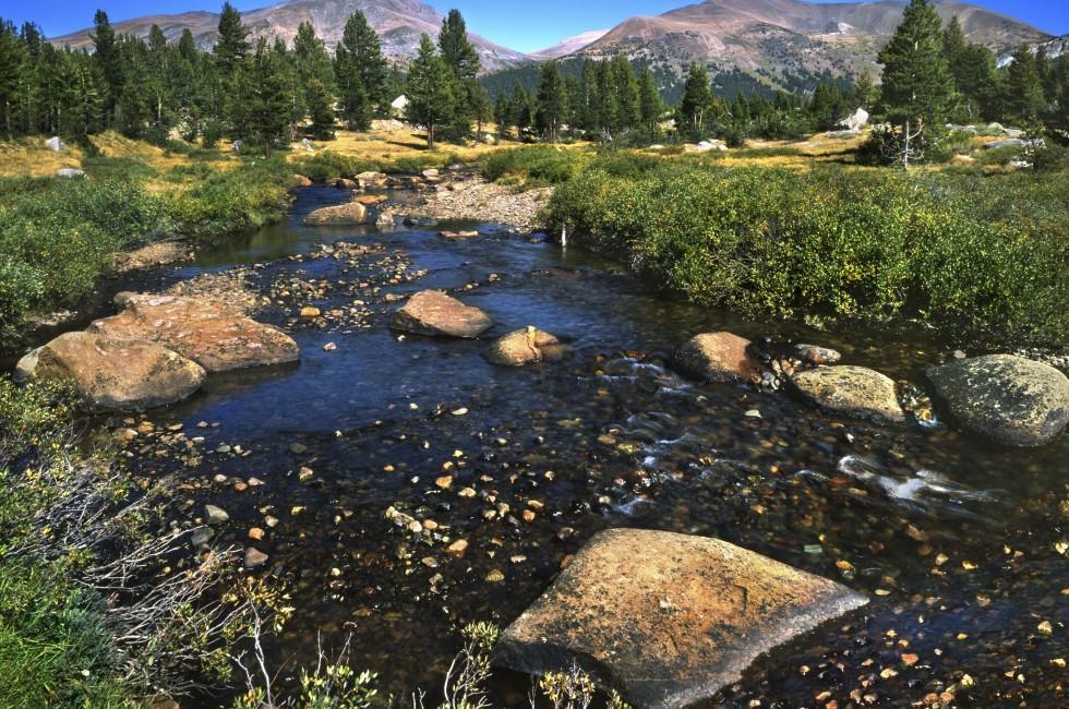 Tuolumne Meadows, Stream, Yosemite National Park, California, USA