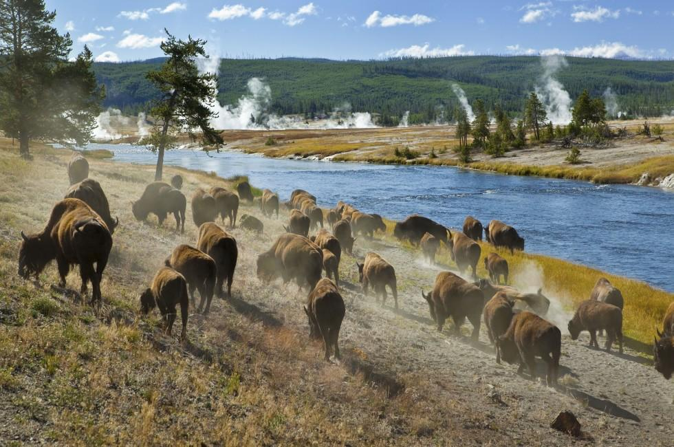 Firehole River,Yellowstone National Park, Wyoming, USA