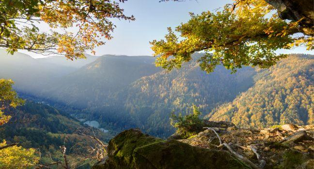 the black forest travel guide fodor s travel