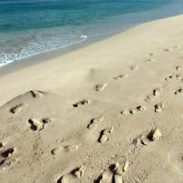 Footprints, Sand, Mullins Beach, Barbados