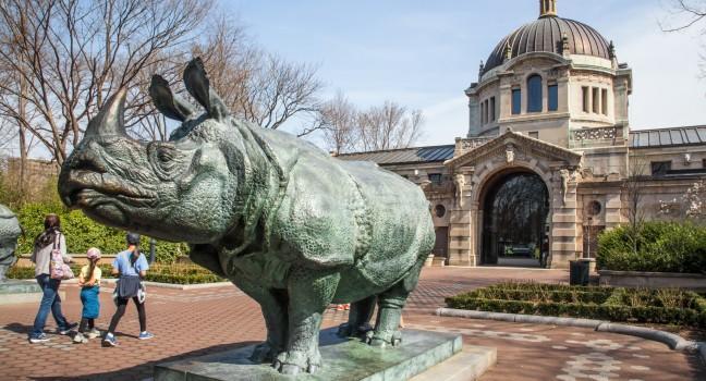 Statue, The Bronx Zoo, The Bronx, New York City, New York, USA