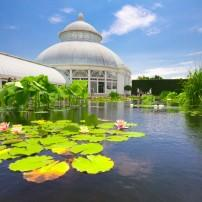 The New York Botanical Garden, The Bronx, New York City, New York, USA