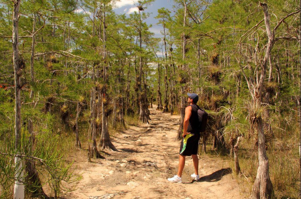 Hiker, Skillet Strand Backcountry Trail, Big Cypress National Preserve, The Everglades, Florida