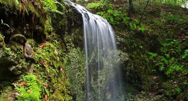 Falling Waters State Park Guide  Fodor's Travel