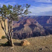 Maricopa Point, South Rim, The Grand Canyon, Arizona, USA