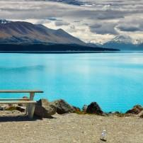 Woman, Lake Pukaki, Mount Cook, Upper South Island and the West Coast, New Zealand
