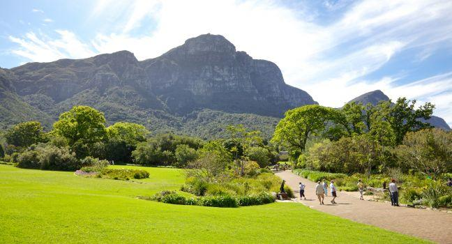 Kirstenbosch National Botanical Gardens Review Fodor 39 S Travel