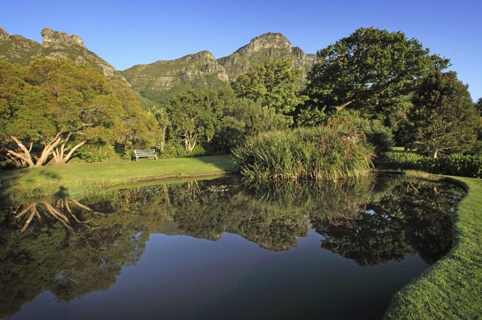 Pond, Kirstenbosch Botanical Garden, Cape Town, South Africa