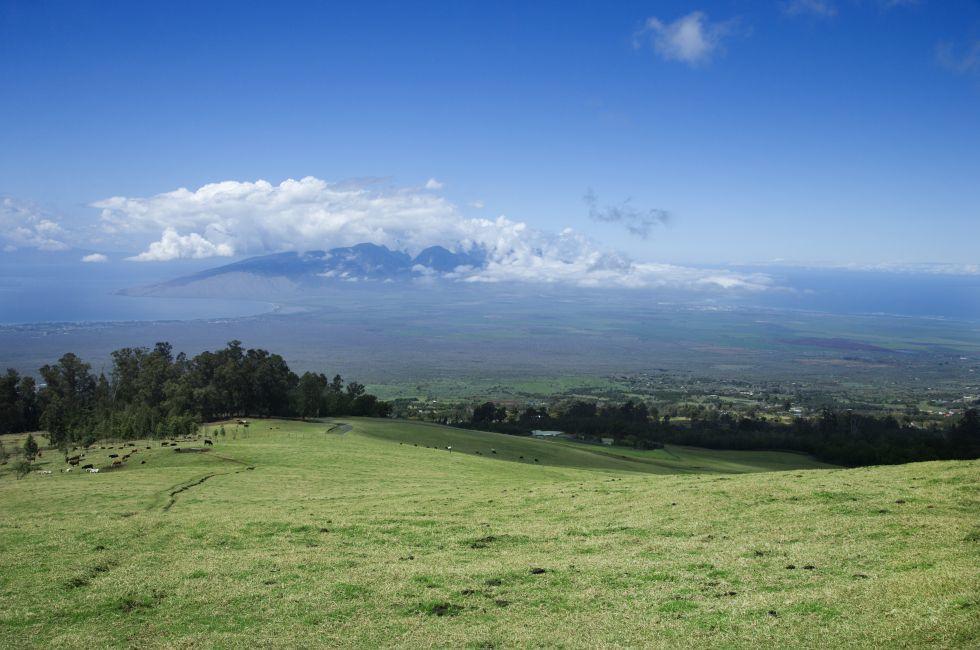 Poli-Poli, Upcountry Maui, Maui, Hawaii, USA