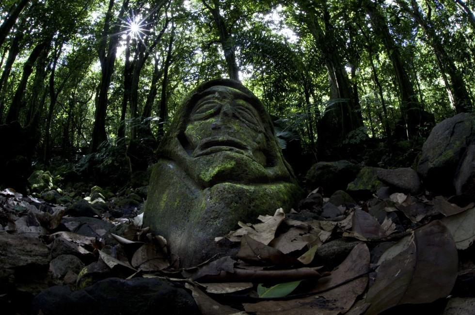 Carving, Rainforest, Moorea, French Polynesia