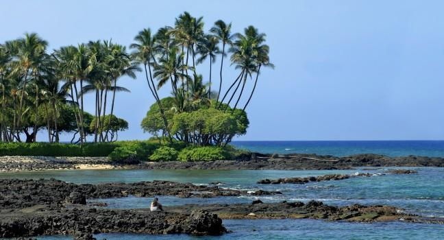 Anaehoomalu Bay, Kohala Coast , Big Island, Hawaii, USA