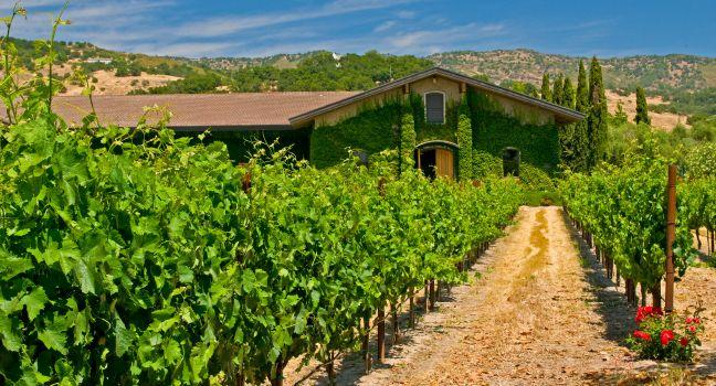 Napa And Sonoma Travel Guide Expert Picks For Your Napa And Sonoma Vacation Fodor S
