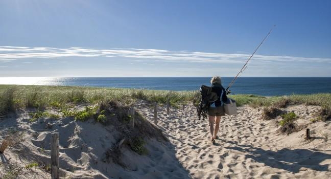 Fishing, Race Point Beach, Cape Cod, Massachusetts, USA