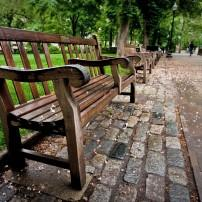 Bench, Rittenhouse Square, Philadelphia, Pennsylvania, USA