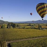 Hot-air Balloons over Vineyards, Napa and Sonoma, California, USA