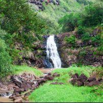 Waimea Valley Park, North Shore Oahu, Honolulu and Oahu, Oahu, Hawaii, USA