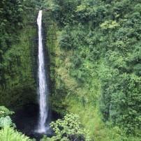 Akaka Falls State Park, Honomu, Hilo, Big Island, Hawaii, USA