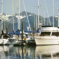 Harbor, Seward, Kenai Peninsula, Prince WIlliam Sound, And Homer, Alaska, USA