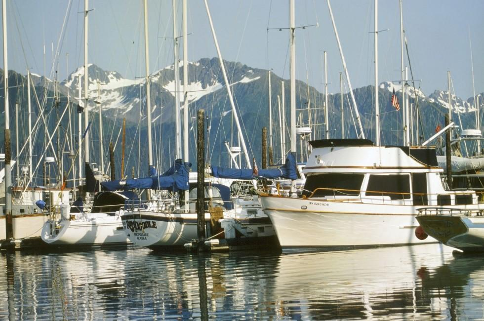 Harbor, Seward, Kenai Peninsula, Prince WIlliam Sound, And Homer, Alaska, USA