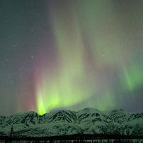 Aurora Borealis, Cantwell, Alaska, USA, North America