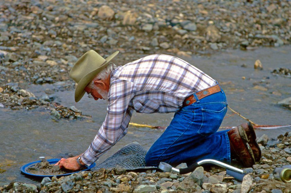 Man, Gold Panning, Fortymile Country, Alaska, USA