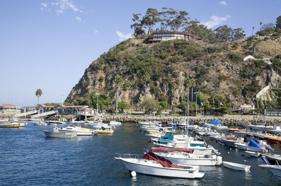 Boats, Avalon Harbor, Catalina Island, The South Coast and Catalina Island, California, USA