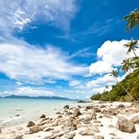 Beach, Koh Samui, The Gulf Coast Beaches, Thailand