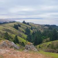 Dipsea Trail, Mill Valley, California, USA