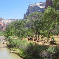 Horseback riding, Canyon, Zion National Park, Utah